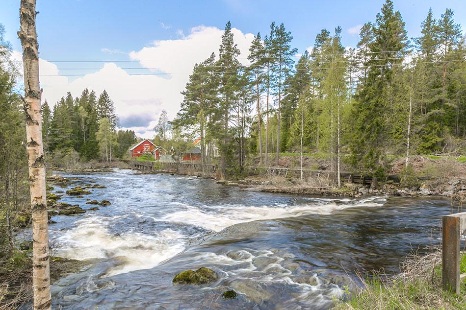 Flott natur kun en times kjøring fra Oslo